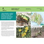 Mellom Bolæren naturmangfold-Færder-nasjonalpark
