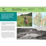 Mellom Bolæren slåttemark-Samuelskilen-Færder nasjonalpark