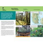 Vestre Bolæren naturmangfold-nord-Færder nasjonalpark