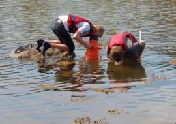 Barn som bruker vannkikkert. Foto: Oslofjordens Friluftsråd.