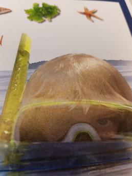 snorkelled