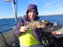 Kysttorskprosjektet prøvefiske 2017. Foto: Even Moland