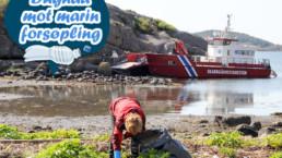 marin forsøpling rydding
